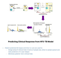 Predicting Clinical Responses from HFS-TB Model